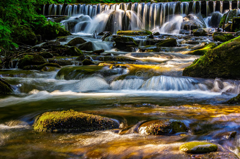 Forest stream splashes on the rock cascade royalty free stock photo