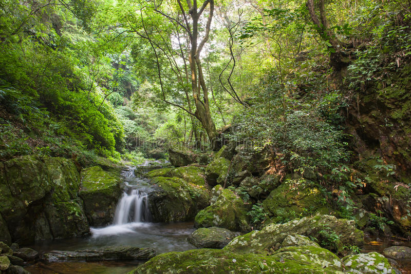 The forest streams and waterfalls. East Asia Chinese, southwest area, Guilin, forest streams and waterfalls, cool and quiet world stock photo