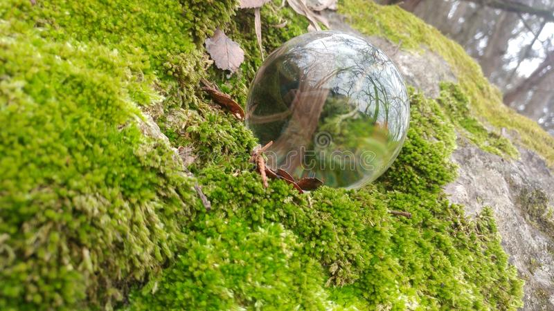 Reflection Orb 2 royalty free stock photos