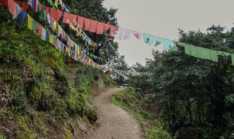 Forest trail to Taktshang Goemba. Or Tiger Nest Monastery in Paro, Bhutan stock photos