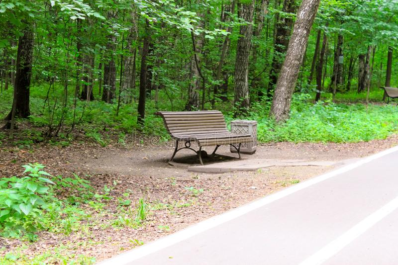 Forest trees, bench and pathway, running, walking, cycling track in a park. City park relax concept stock images