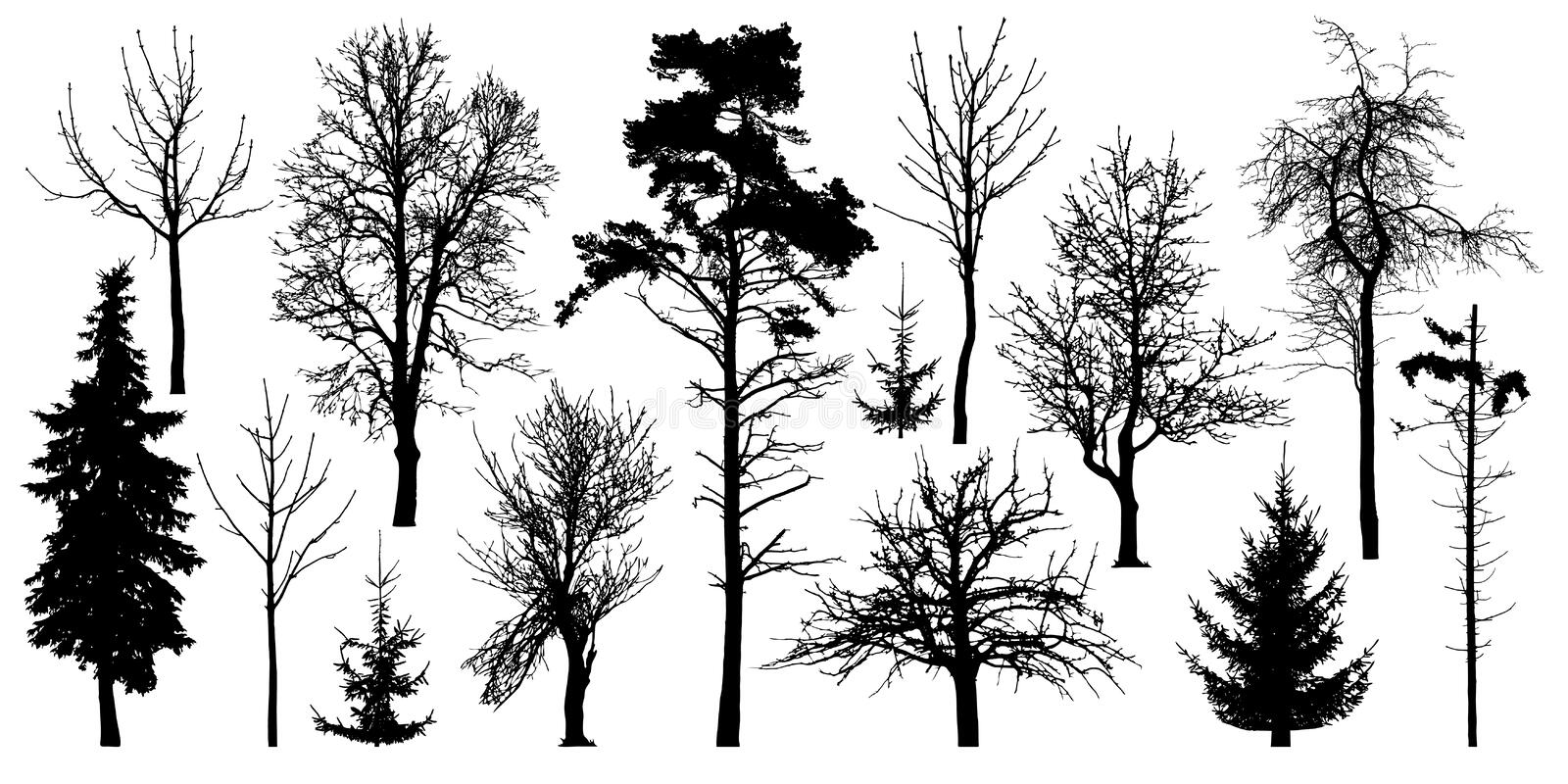 Forest trees without leaves. Winter trees set, silhouette vector. Ð¡ollection of isolated tree trunks with knots.  vector illustration