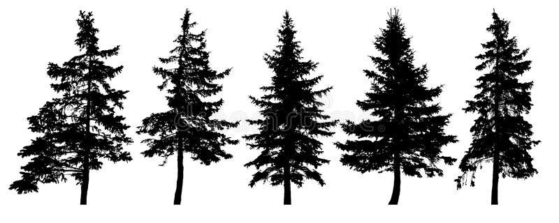 Forest trees silhouette. Isolated vector set. Christmas tree, cedar, fir-tree, pine, pine-tree, Scotch fir vector illustration