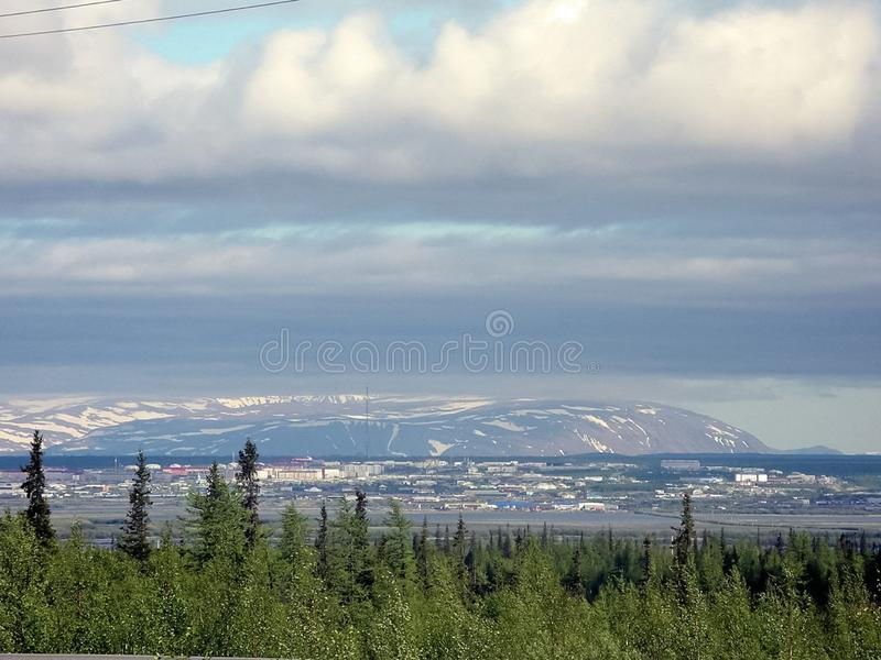 Forest tundra landscape in the . Taiga of Siberia. Yamal. Forest tundra landscape in the summer. Taiga of Siberia. Yamal royalty free stock photos