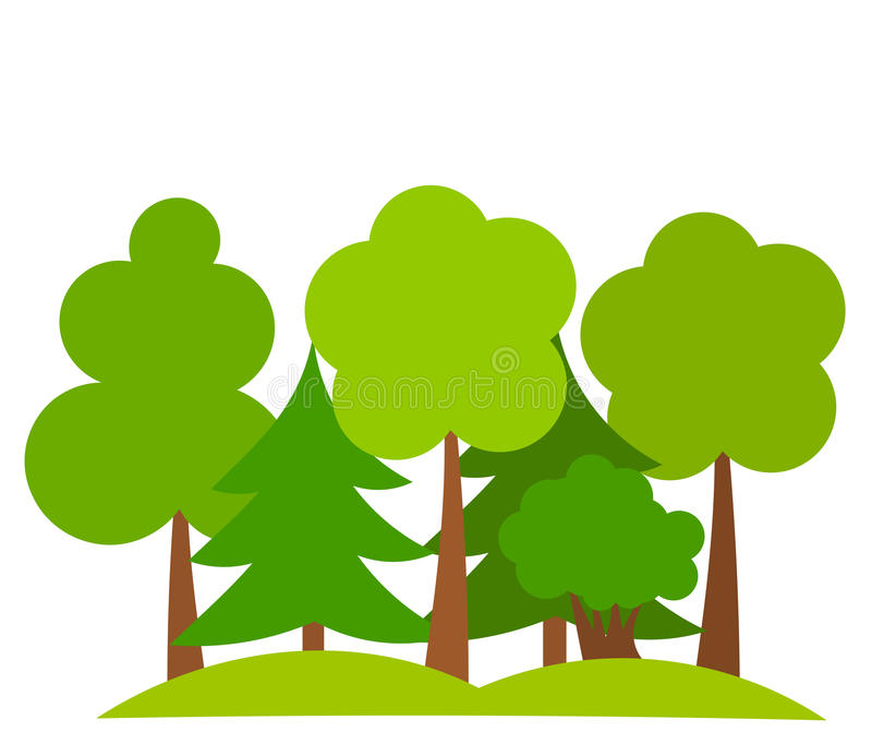 Forest. Various trees in forest. Vector illustration vector illustration