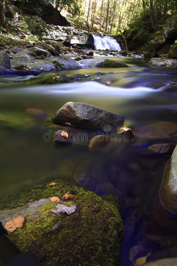 Download Forest waterfall stock image. Image of boulders, sunlight - 16447283