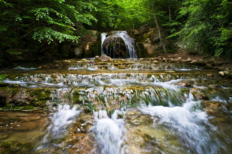 Forest Waterfall stock photos