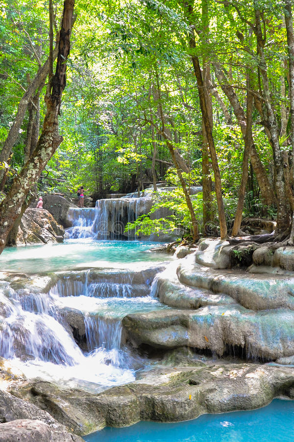 Forest waterfall royalty free stock image
