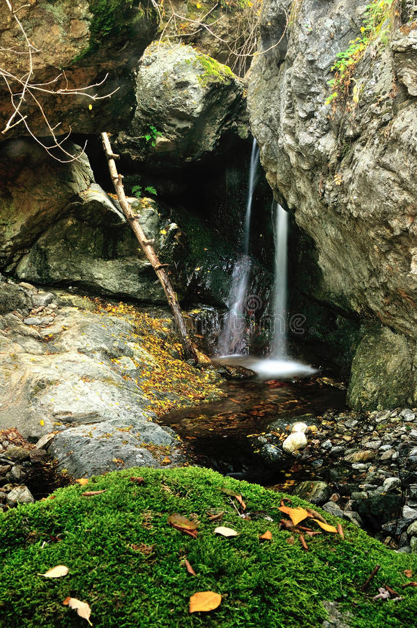 Download Forest waterfall and rocks stock photo. Image of heaven - 27795406