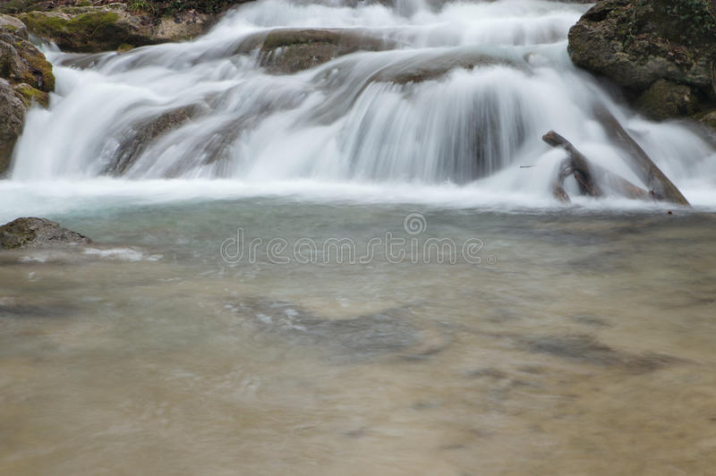 Download Forest waterfall stock image. Image of tree, water, waterfall - 33143379