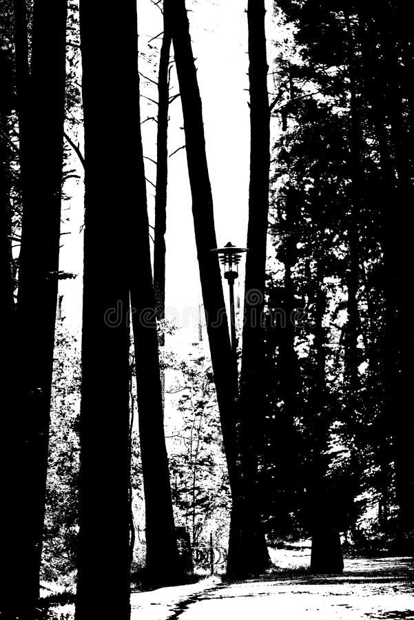 Forest way in black and white royalty free illustration