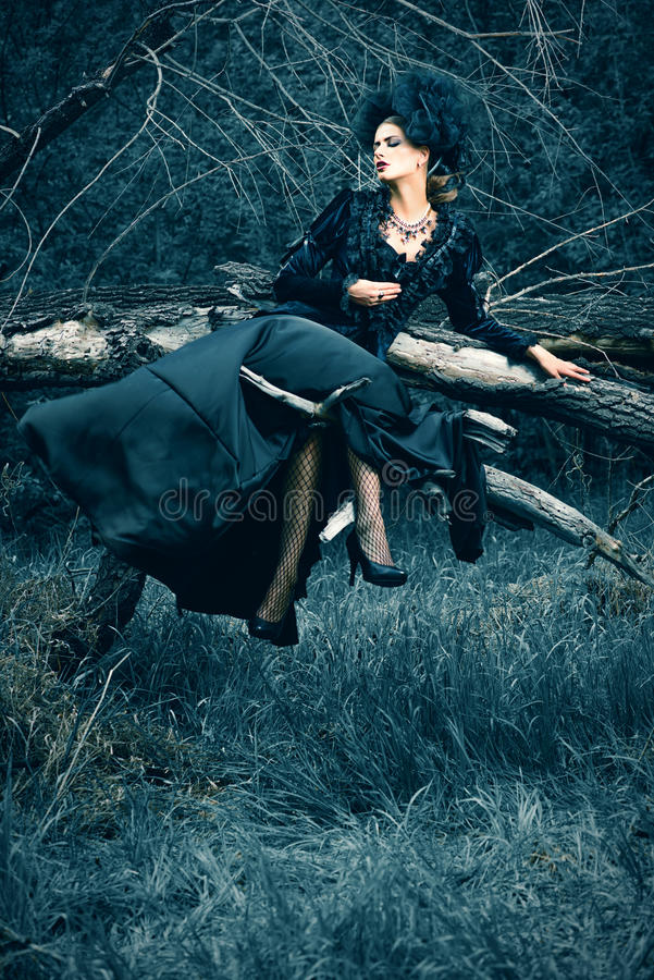 Forest witch royalty free stock image
