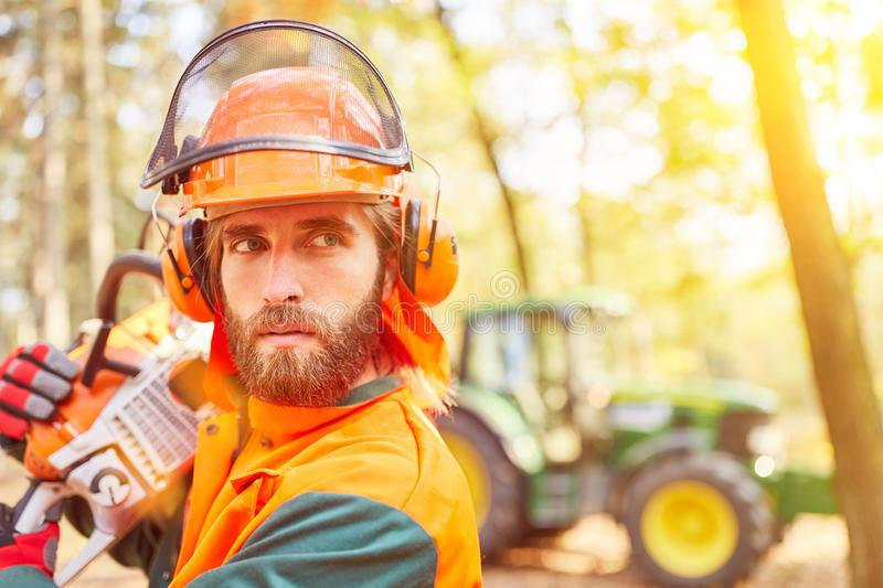 Forest worker with chainsaw and safety. Forest worker as a woodcutter with chainsaw and work safety in the forest royalty free stock photography