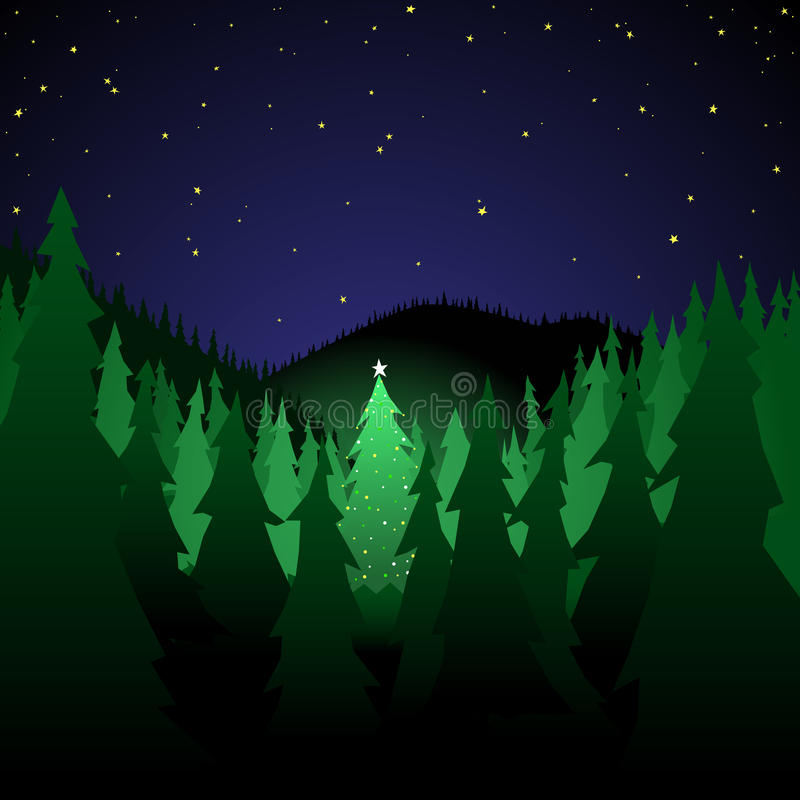 Forest With Xmas Tree Royalty Free Stock Photo