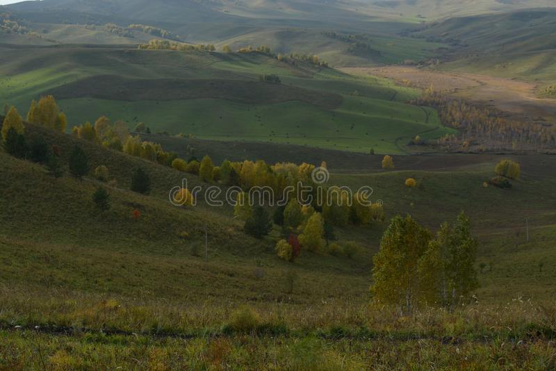 Green brown yellow valley hills autumn Russia. Forest yellow green valley bright autumn park Russia view of the valley hills horison stock images