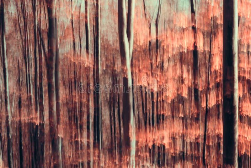Foresta astratta fotografia stock