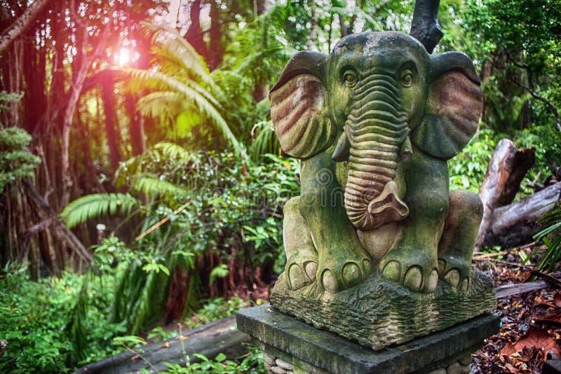 Foresta Bali della scimmia immagine stock
