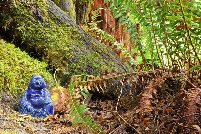 Foresta Buddha fotografia stock libera da diritti