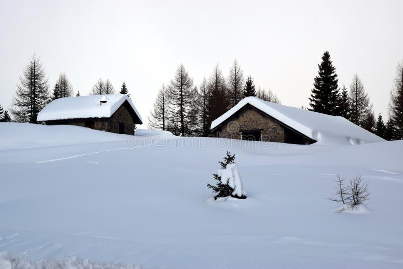 Foresta, cielo, casette, alberi, inverno in montagne di Dolomiti, in Cadore, l'Italia fotografia stock libera da diritti