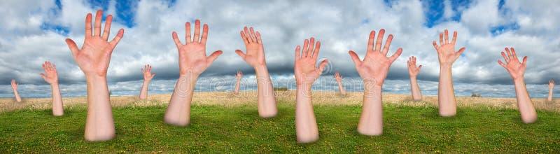 Foresta degli alberi fatti delle mani, sedere astratte di concetto fotografie stock libere da diritti
