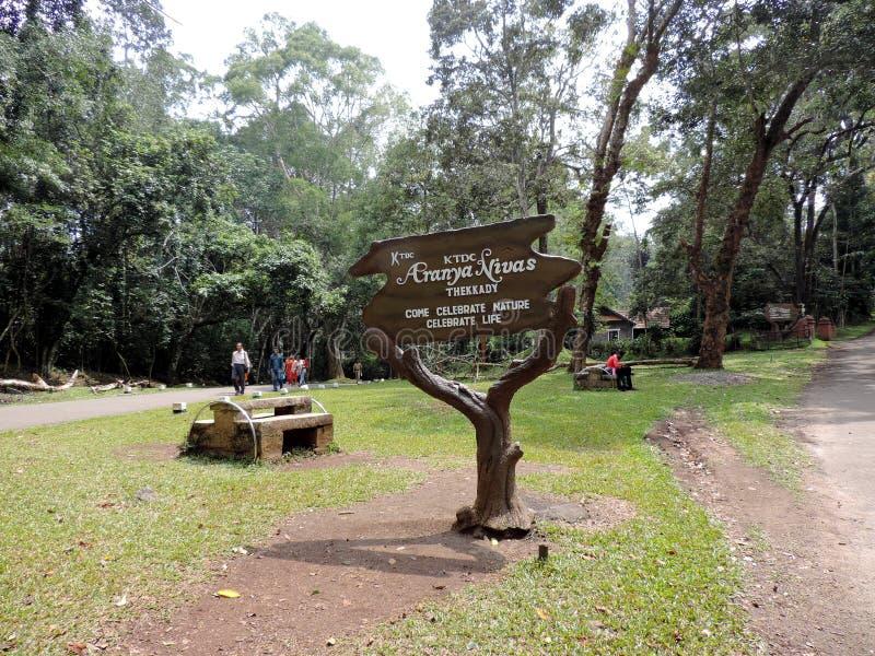 Foresta del parco nazionale di Periyar, Kerala fotografia stock