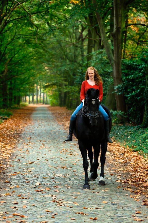 Foresta del vicolo del viale del cavallo dello stallone del nero di guida della ragazza fotografia stock