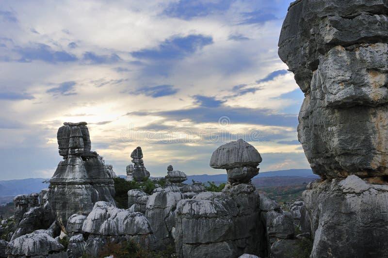 Foresta della roccia granitica caolinizzata immagini stock libere da diritti
