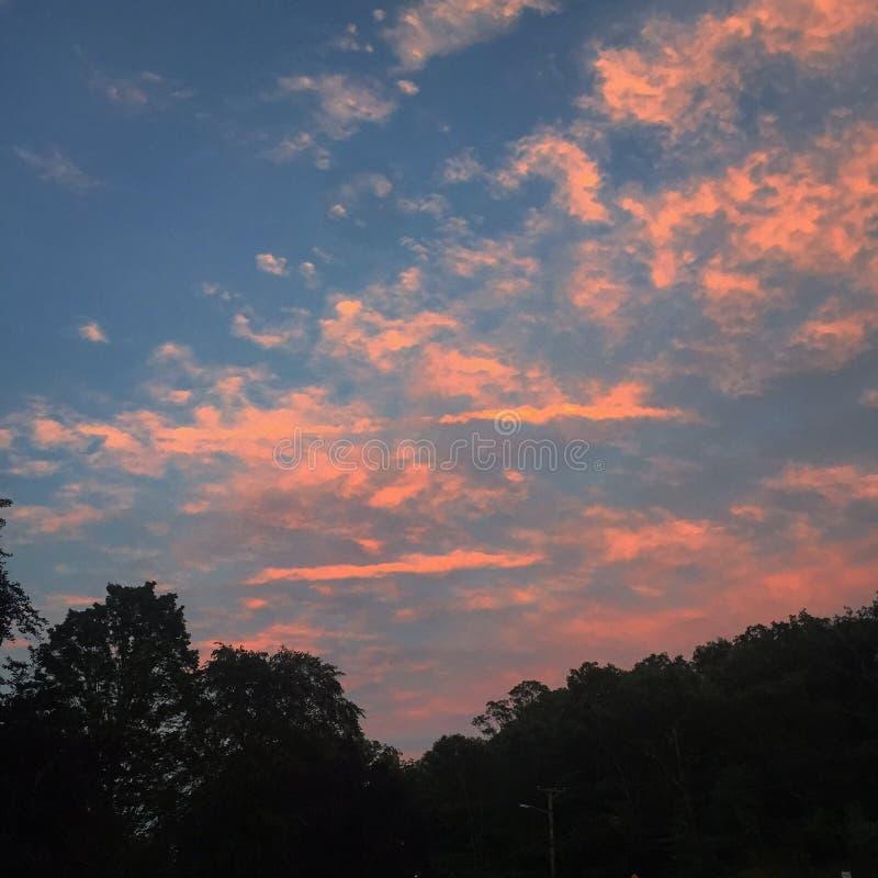 Foresta delle nuvole dei cieli fotografia stock
