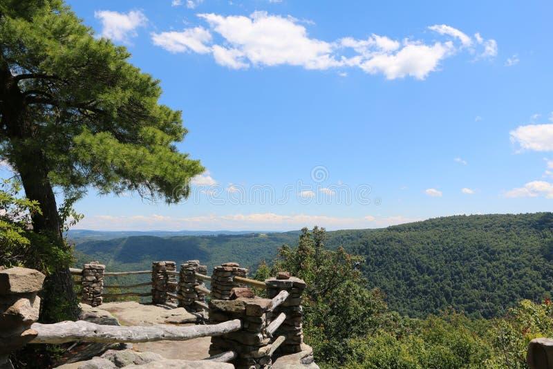 Foresta dello stato della roccia del bottaio fotografia stock