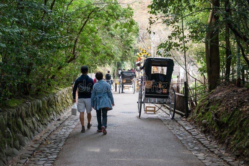 Foresta di bambù di Sagano in Arashiyama fotografia stock