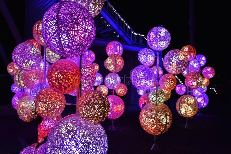 Foresta di fiaba con illuminazione variopinta immagini stock libere da diritti