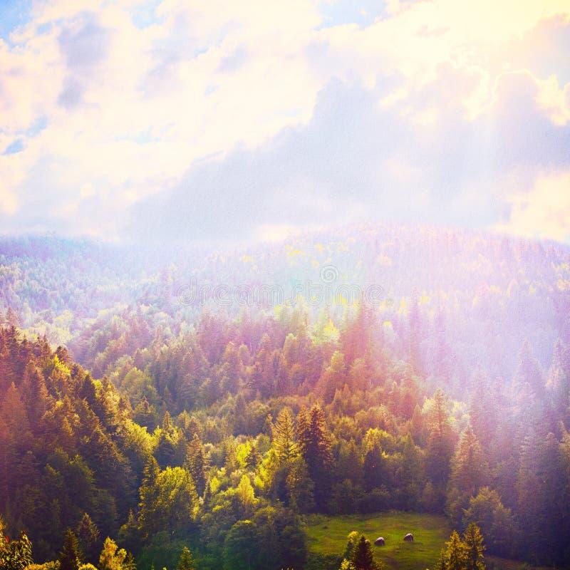 Foresta di fiaba nel retro stile Paesaggio della montagna, fondo della natura illustrazione di stock