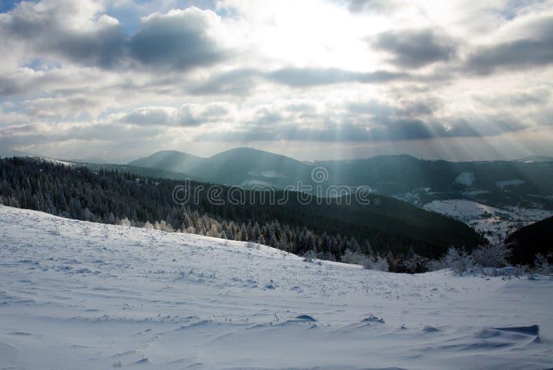 Foresta di inverno dei fasci del sole e del cielo nuvoloso in montagne fotografia stock libera da diritti