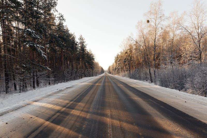 Foresta di inverno, primo piano immagine stock