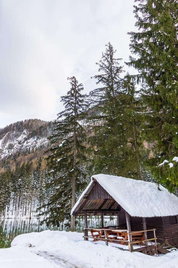 Foresta di inverno di Snowy fotografie stock libere da diritti