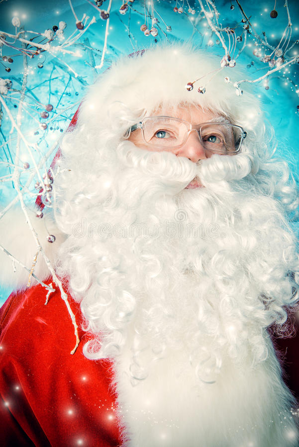 Foresta di Santa Claus immagini stock