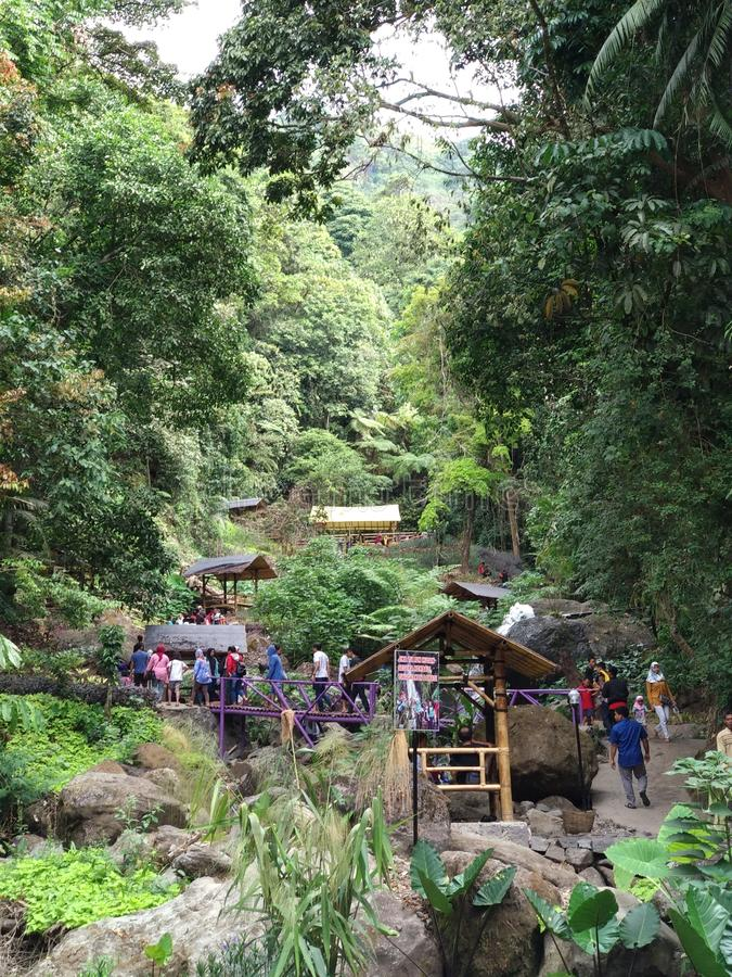 Foresta di Srambang, destinazione della montagna fotografia stock libera da diritti