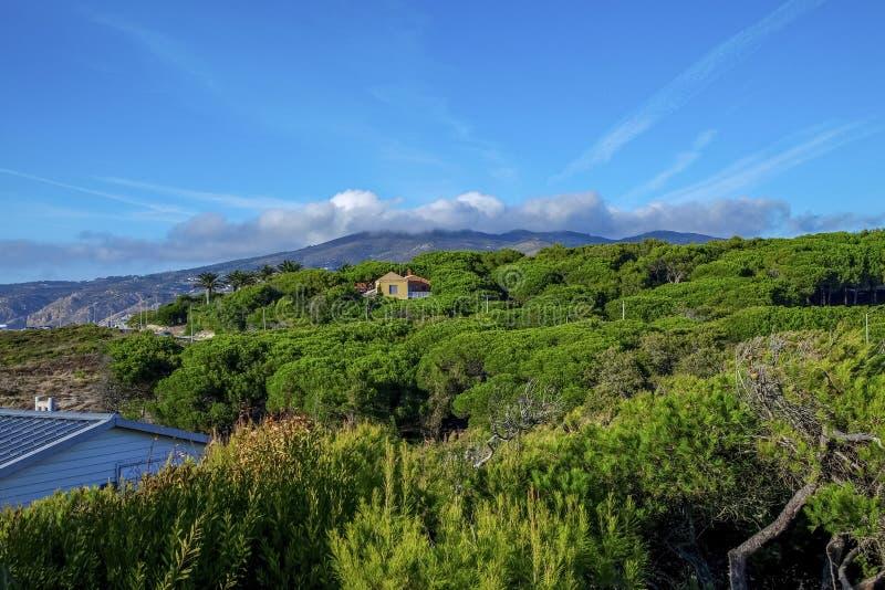 Foresta di verde del ` s della montagna con le belle nuvole e case fotografia stock