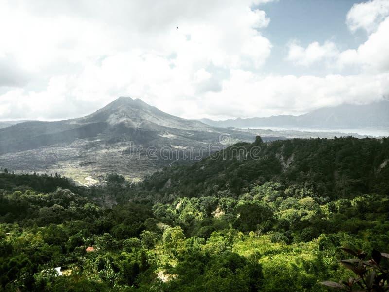 Foresta e la montagna immagine stock