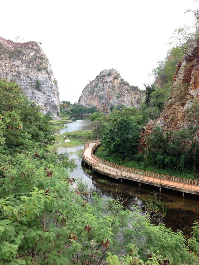 Foresta e montagna dello stagno del ponte immagini stock libere da diritti