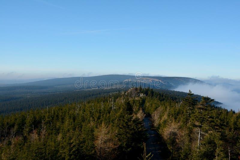 Foresta e nuvole in montagne di Izerskie fotografia stock