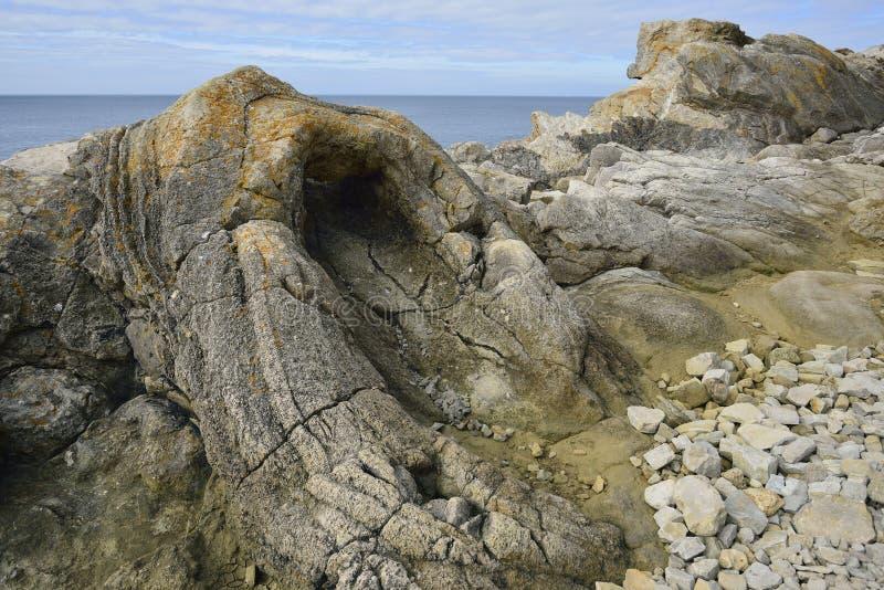 Download Foresta fossile fotografia stock. Immagine di litorale - 56889974
