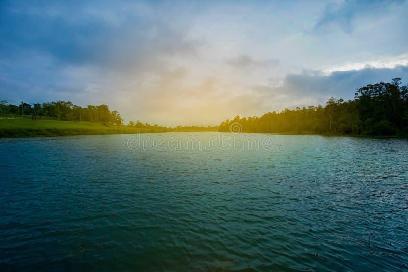 Foresta, lago, pietra - oggetto, Tailandia, acqua immagine stock