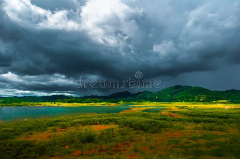 Foresta meravigliosa della montagna di colori immagine stock
