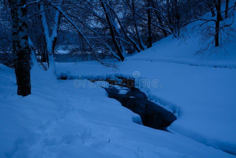 Foresta mista nella proprietà dopo le precipitazioni nevose, Mosca, Russia di Kolomenskoye fotografia stock