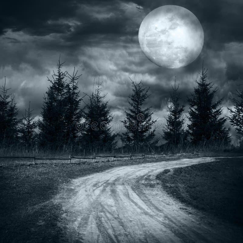 Foresta misteriosa nell'ambito della notte drammatica della luna del cielo nuvoloso in pieno fotografie stock