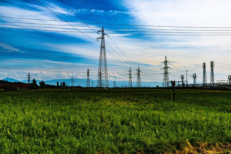 Foresta moderna con vita elettrica fotografia stock