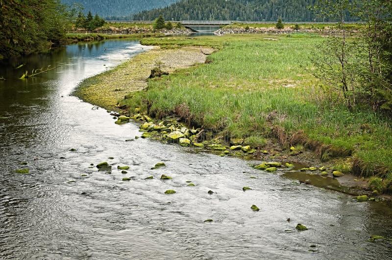 Foresta nazionale di Tongass, Sitka Alaska fotografia stock