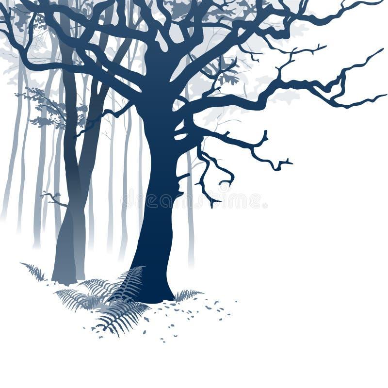 Foresta nebbiosa illustrazione di stock