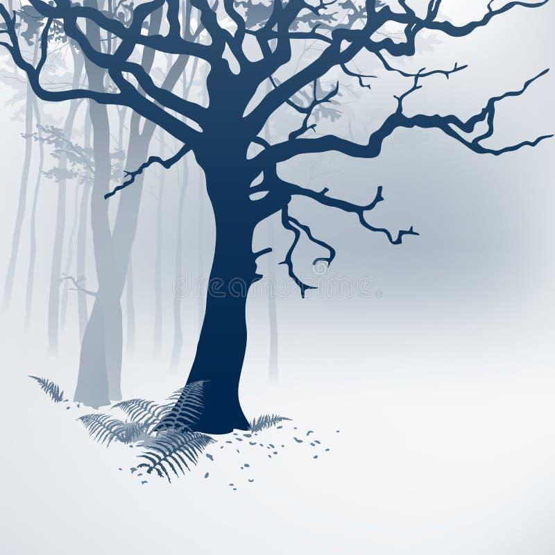 Foresta nebbiosa illustrazione vettoriale